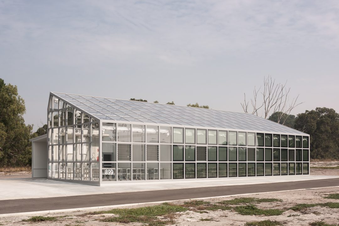 project greenhouse >